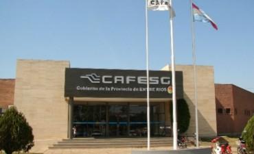 Cafesg reclama: ¿Dónde están los 85 millones?