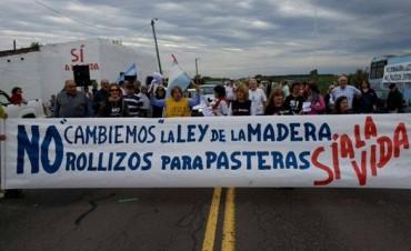 Vuelven a las rutas contra pasteras y la derogación de la ley de la Madera