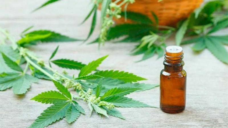 Promulgaron la adhesión de Entre Ríos a la ley de cannabis medicinal
