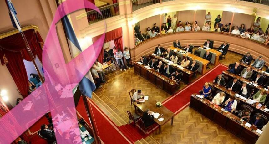 Proponen ampliar licencias de salud para mujeres en Entre Ríos