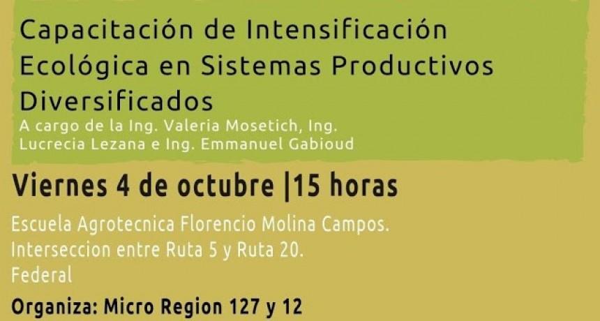 Se brinda capacitación ecológica en sistemas  productivos diversificados