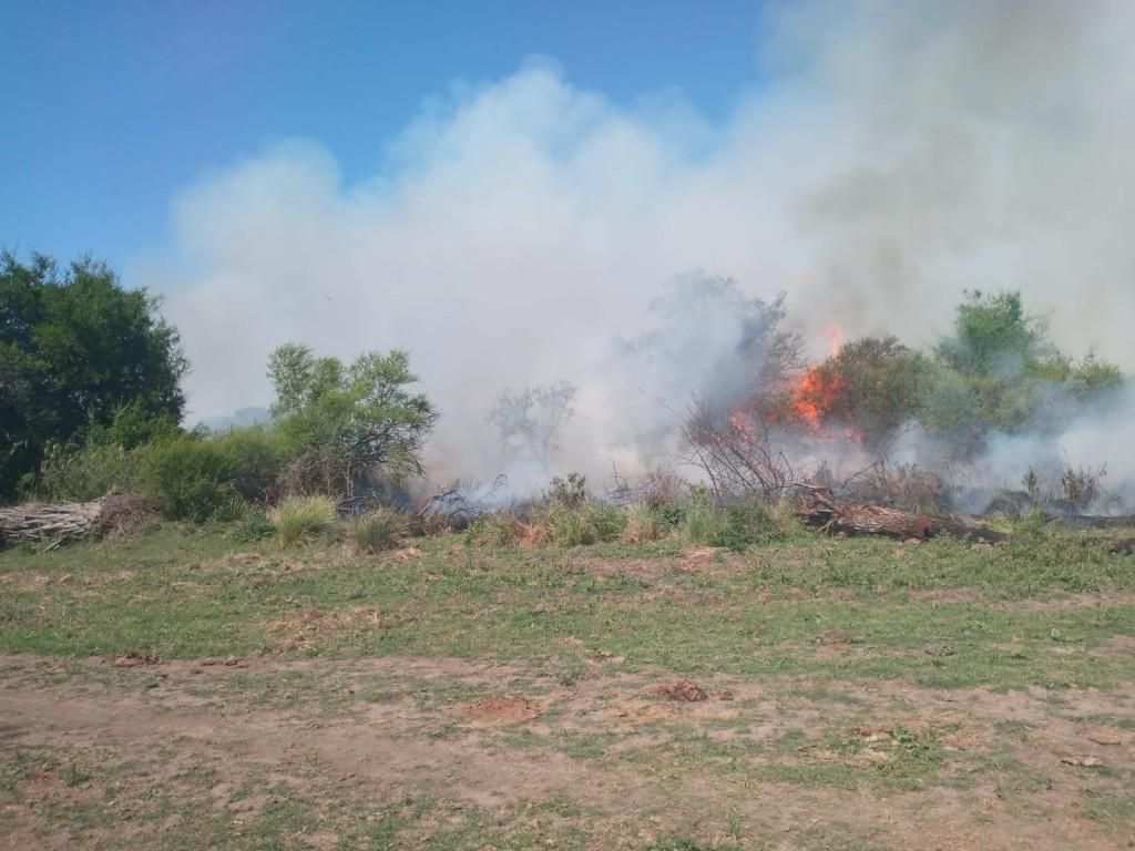 Incendio forestal de gran magnitud en el establecimiento