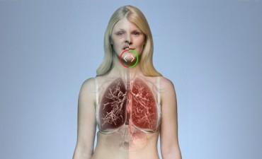 Cigarrillos: un atado puede causar 150 mutaciones al año en los pulmones