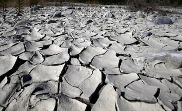 Los últimos cinco años fueron los más calurosos nunca antes registrados