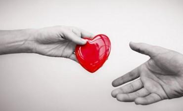 Por qué se debe donar sangre dos veces al año