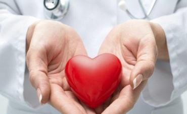 Conocé los cuatro alimentos clave para tener un corazón saludable
