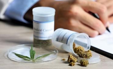 Diputados debatirán la adhesión de Entre Ríos a la ley de cannabis medicinal