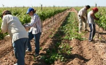 Trabajadores rurales cobrarán bono de fin de año de $ 2.000