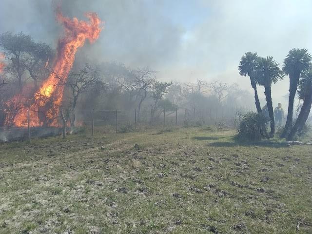 """Comisaria Conscripto Bernardi trabajó en el control de un incendio en el establecimiento """"El Cencerro"""""""
