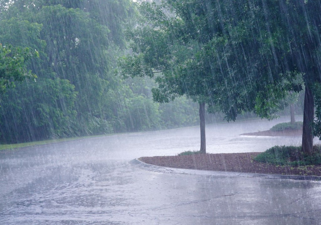 Lo que va de lluvias en el año para Federal