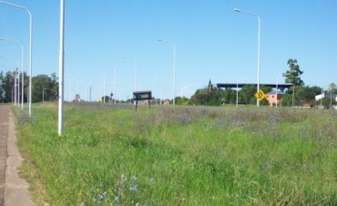 La ruta nacional 127 siempre es tema de reclamo, ahora el pasto y las luces