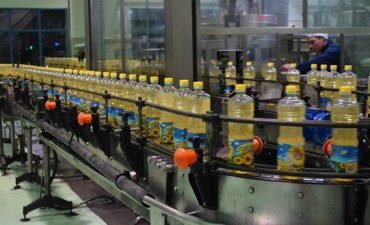 Desde adentro, cómo se produce el aceite que consumimos a diario