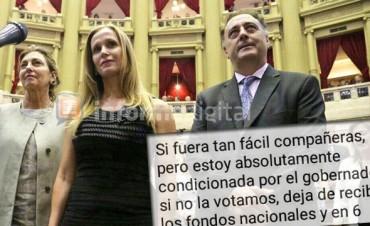 Mensaje de diputada entrerriana revela las presiones para aprobar la Reforma
