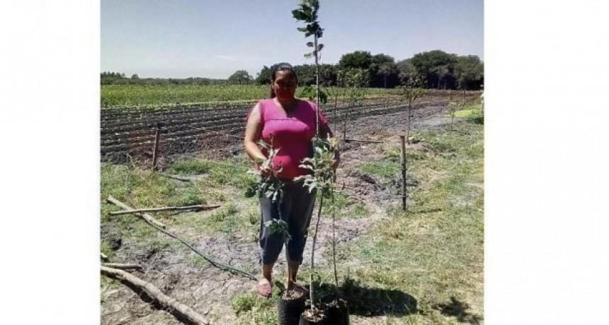 Con apoyo del INTA, se desarrolla un plan de producción de manzanas en Federal