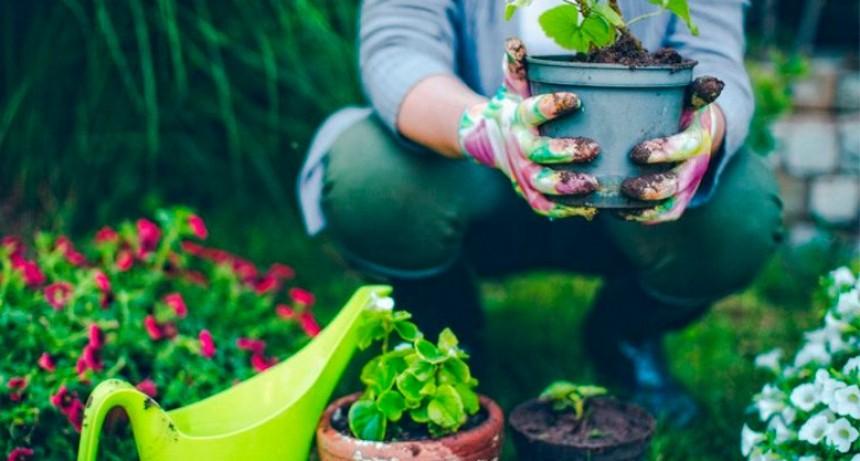 Comienza en 2020 la Tecnicatura Universitaria en Jardinería: Cómo inscribirse