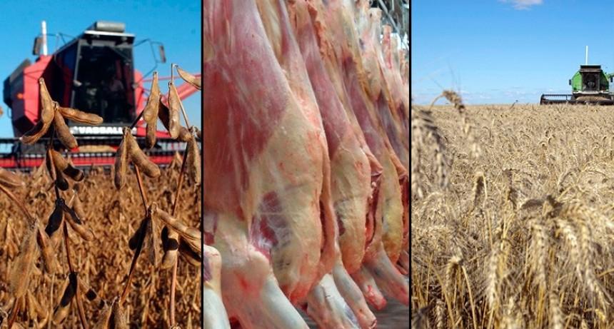 Retenciones: Habrá compensaciones a pequeños productores y cooperativas
